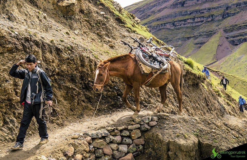 horse go to riding peru