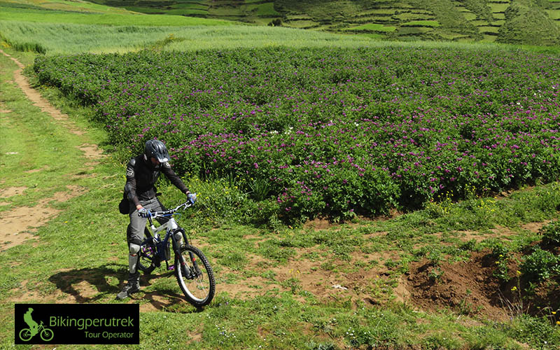mountain bike yuncaypata cusco peru